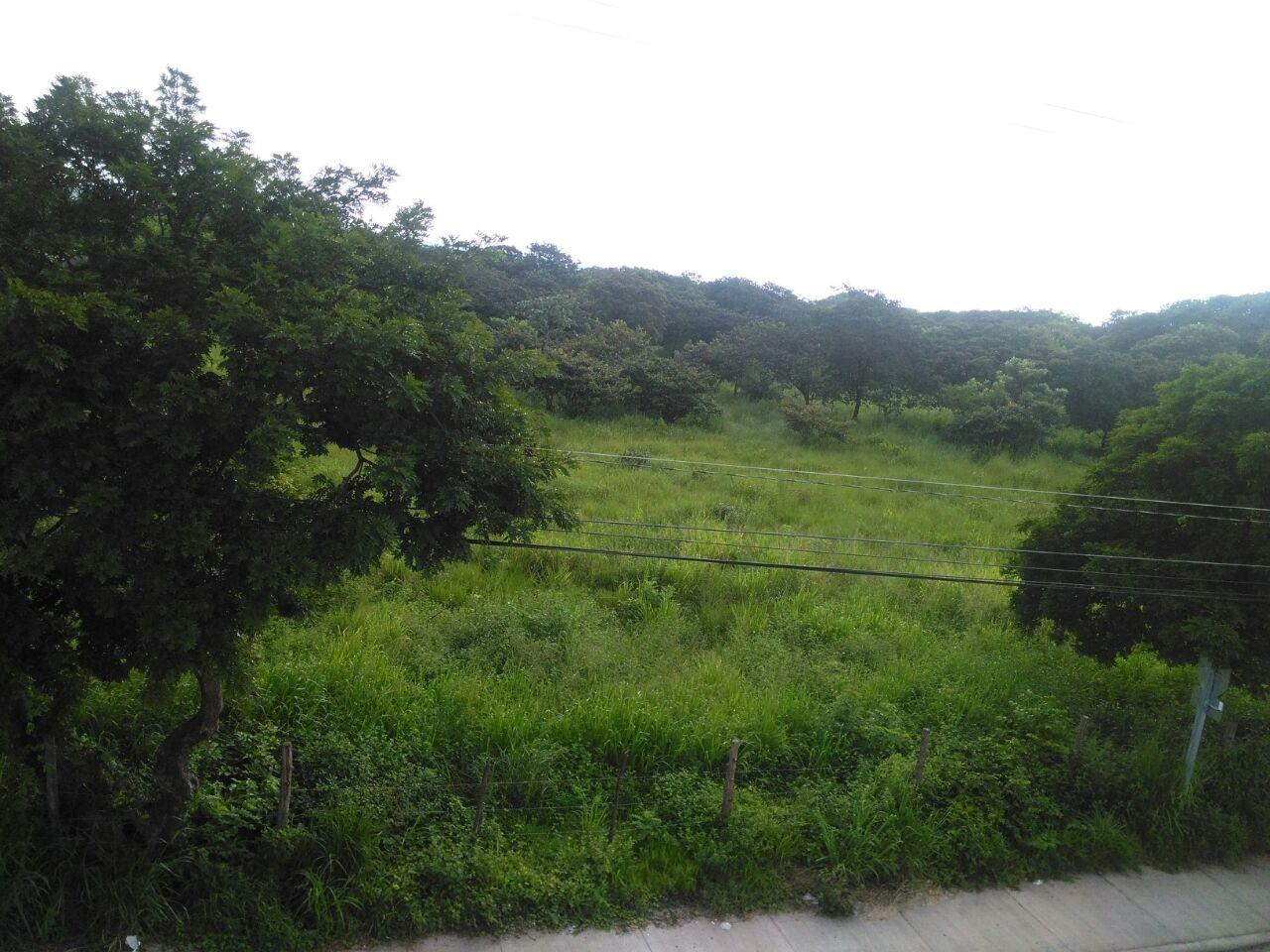 2435 Lote Comercial de 23.300m2 en Liberia