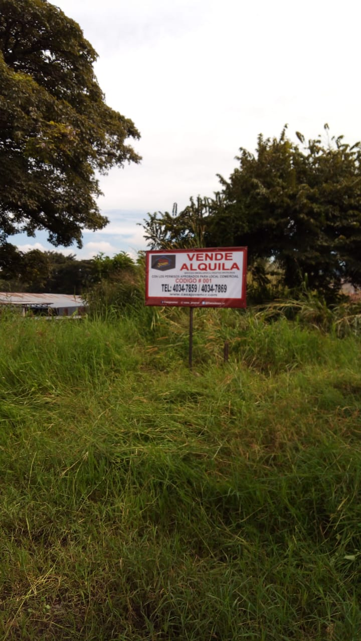 001 Lot for sale or rent in Santa Ana. 500 meters from the Red Cross
